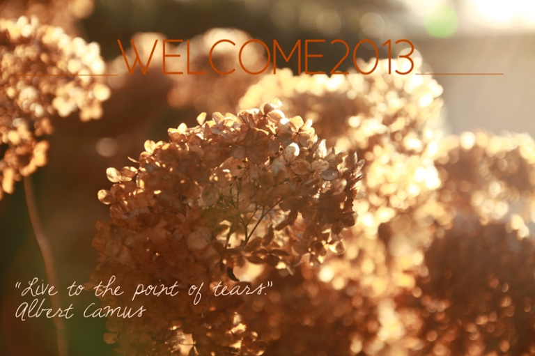 Welcome-2013